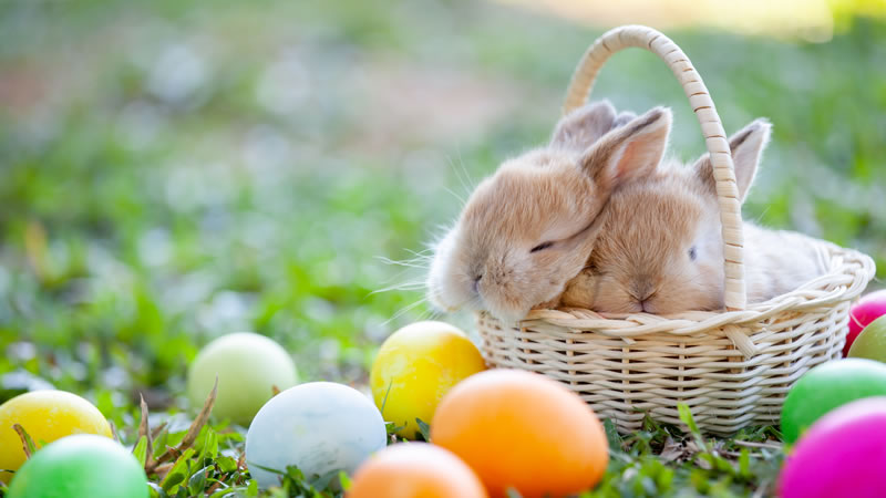 Easter 2019 Events in Norfolk