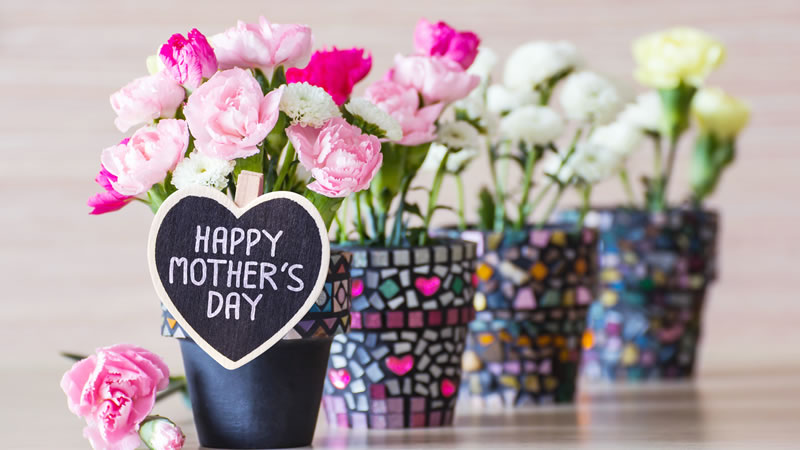 15 Ideas To Spoil Mum In Norfolk This Mother S Day
