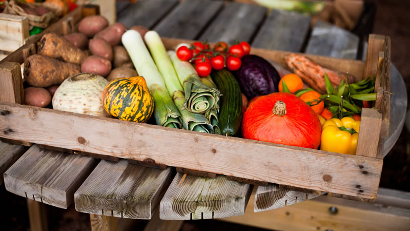 Some of the best Farm Shops in Norfolk