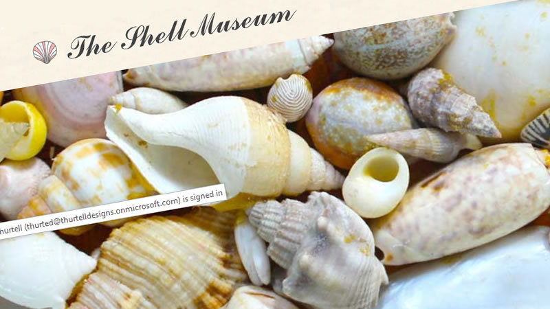 The Shell Museum